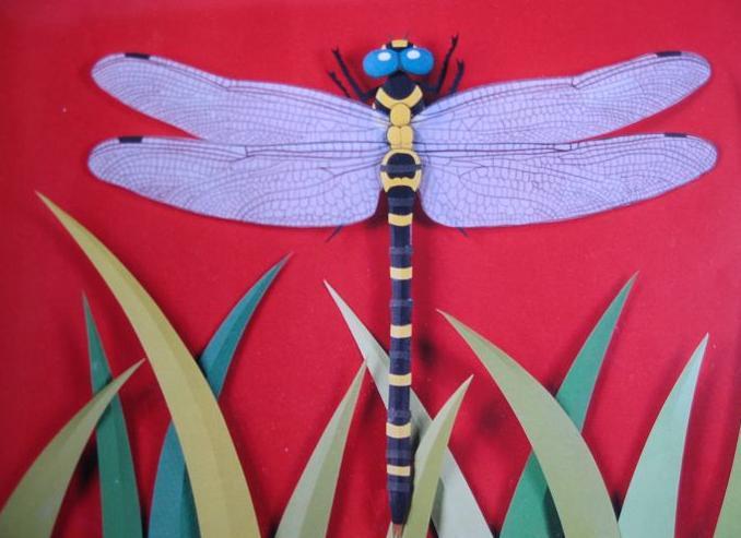 幼儿园墙面布置:蜻蜓