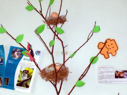 幼儿园环境布置27:鸟巢