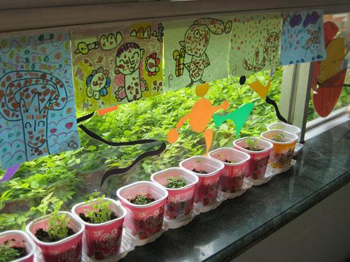 """""""奇妙的蛋""""主题活动环境创设图片-幼儿园主题墙-图片"""