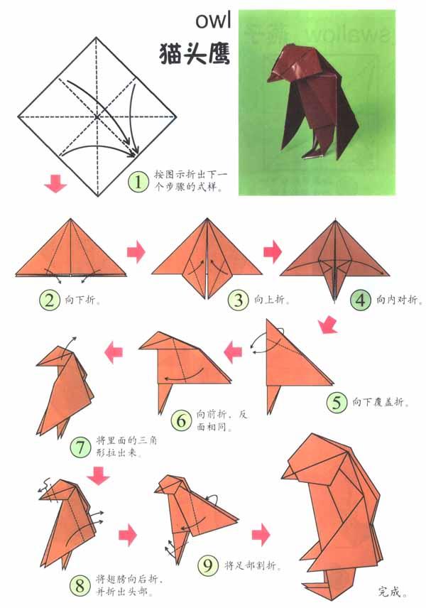 大班折纸活动:可爱的猫头鹰