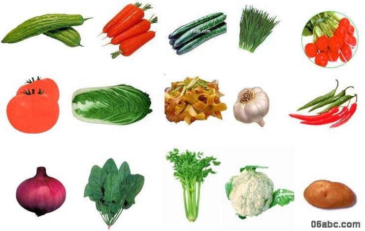 640){this.height=this.height*640/this.width;this.width=640;} border=0> 你知道这些蔬菜的名称吗?我们吃的是它的哪部分?哪些我们吃它的根?哪些我们吃它的茎?哪些我们吃它的叶?哪些我们吃它的花?哪些我们吃它的果实?......