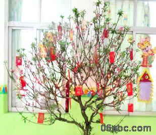 废旧物手工制作:许愿树 圣诞树图片