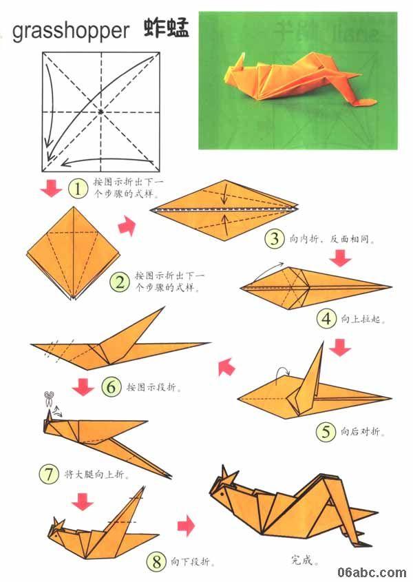 大班手工折纸活动 教你折可爱的蚱蜢 grasshopper