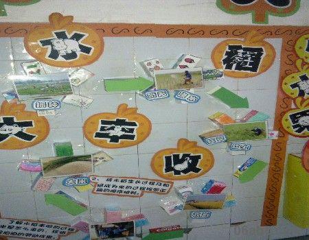 > 中大班秋天主题墙饰:美丽的秋天-幼儿园环境布置图片   水稻大丰收