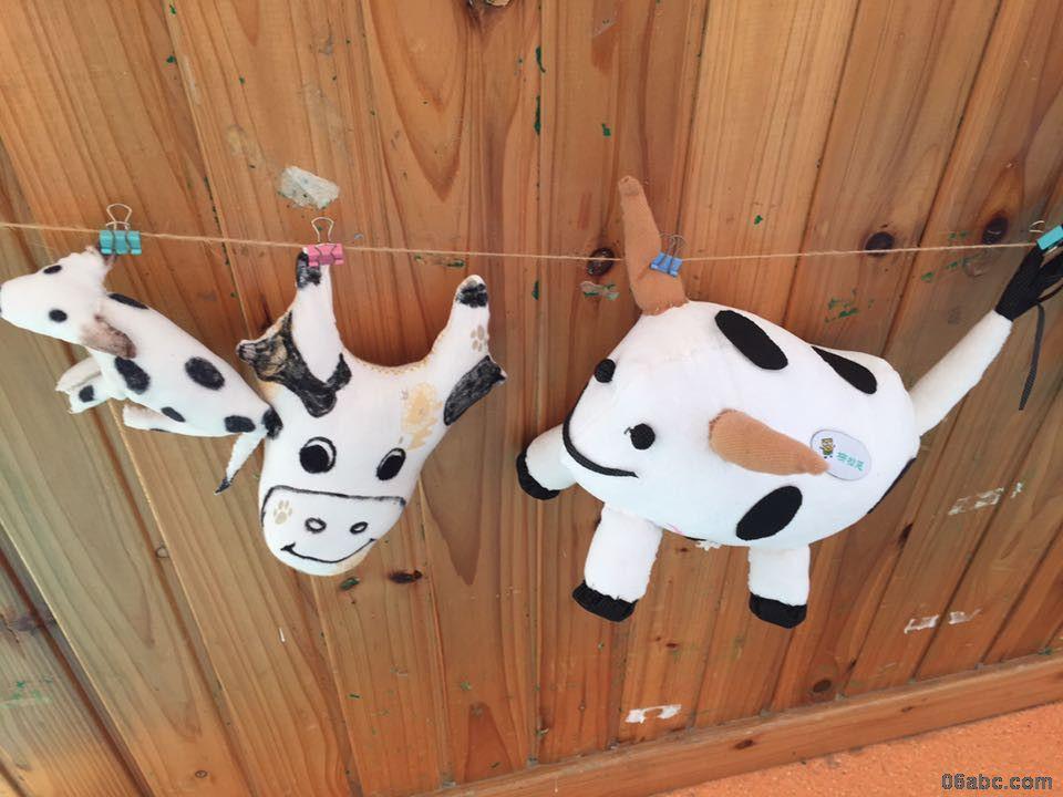 为了更好的帮助幼儿了解奶牛的外形特征,我们举行了一次制作奶牛的亲子活动,妈妈奶奶们一起找材料,使出浑身的解数来进行奶牛的制作,孩子们一边看着奶牛的图片,再和自己妈妈制作的奶牛进行比较,看看妈妈和奶奶做奶牛和图片上的有什么不一样,一边还指导着妈妈们哪里还缺了什么,要和图片上的奶牛一样才可以。