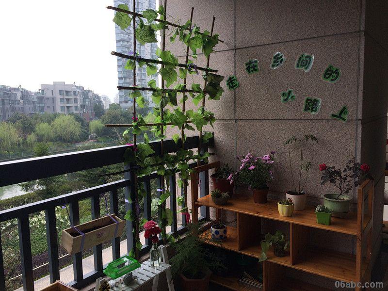 春天来了——春江花城幼儿园举行自然角评比活动