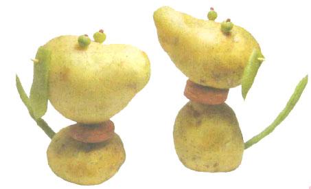 幼儿园手工制作:我爱土豆狗