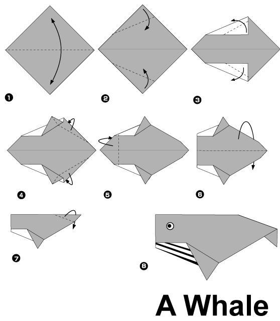 幼儿园手工制作:鲸鱼折纸