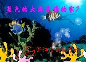 幼儿园小班诗歌教学课件:家flash(蓝色的大海是谁的家)