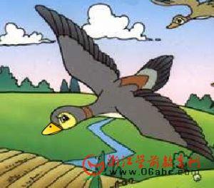 少儿谜语歌谣FLASH:大雁