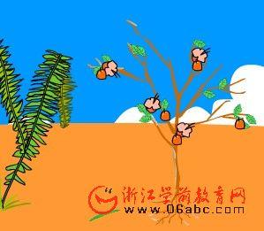 儿童科学常识课件:开花结果的植物