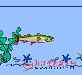 大班科学常识课件:逗逗这条鱼