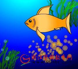 大班科学常识课件:鱼都是卵生吗?(卵胎生)