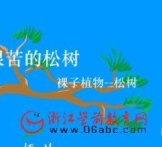 幼儿科学常识课件:不怕艰苦的松树(裸子植物)