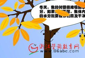 秋天的落叶-幼儿园科学课件PPT