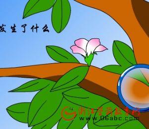 儿童科常课件:小树的一生从那里开始