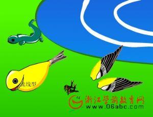 儿童科学课件:一只鸟儿爬上来