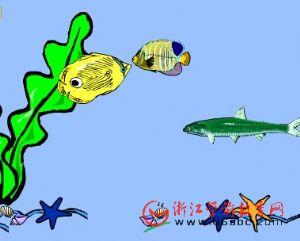 儿童科学课件:鱼儿身上有条线
