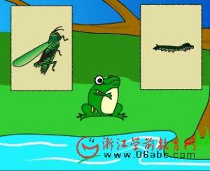 儿童科学课件:听青蛙讲课(完全变态与不完全变态)