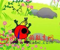 幼儿园小班数学课件(ppt):帮瓢虫找家