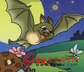 幼儿园儿歌FLASH:蝙蝠