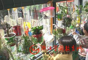 杭州胜利幼:伢儿的创新低碳生活