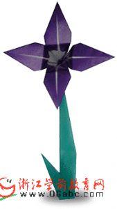 幼儿园手工制作:紫色四瓣花