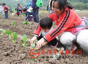 浙大幼儿园有机蔬菜基地学种菜
